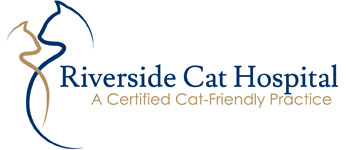 Riverside Cat Hospital